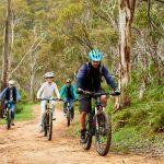 Escapegoat Mountain Bike Tours, Cleland Conservation Park